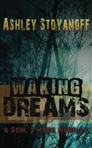 Waking_Dreams_Cover_for_Kindle